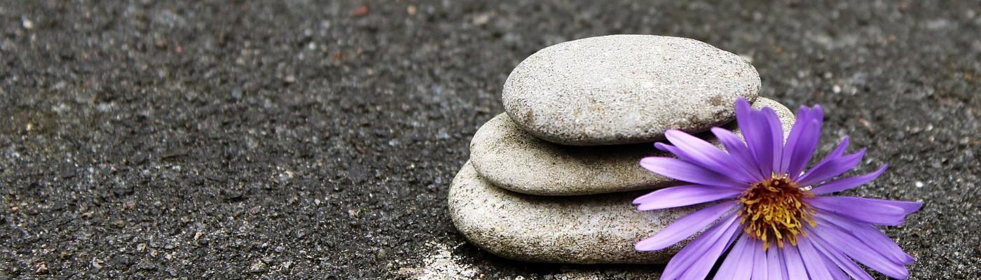 Berg Fysiotherapie & Yoga